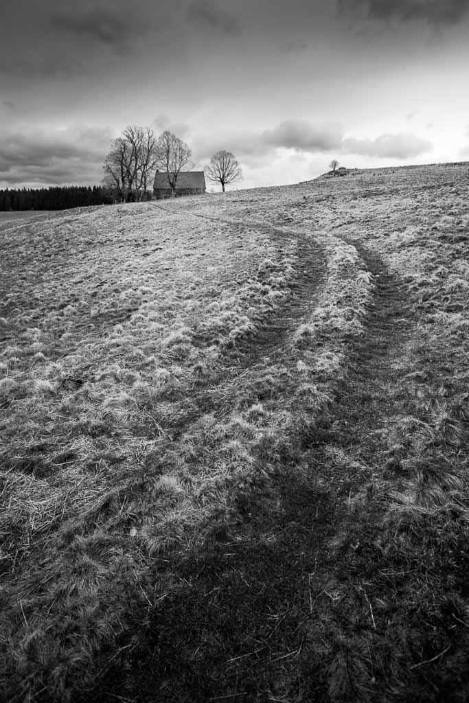 Le chemin de terre du vieux buron Cantalien