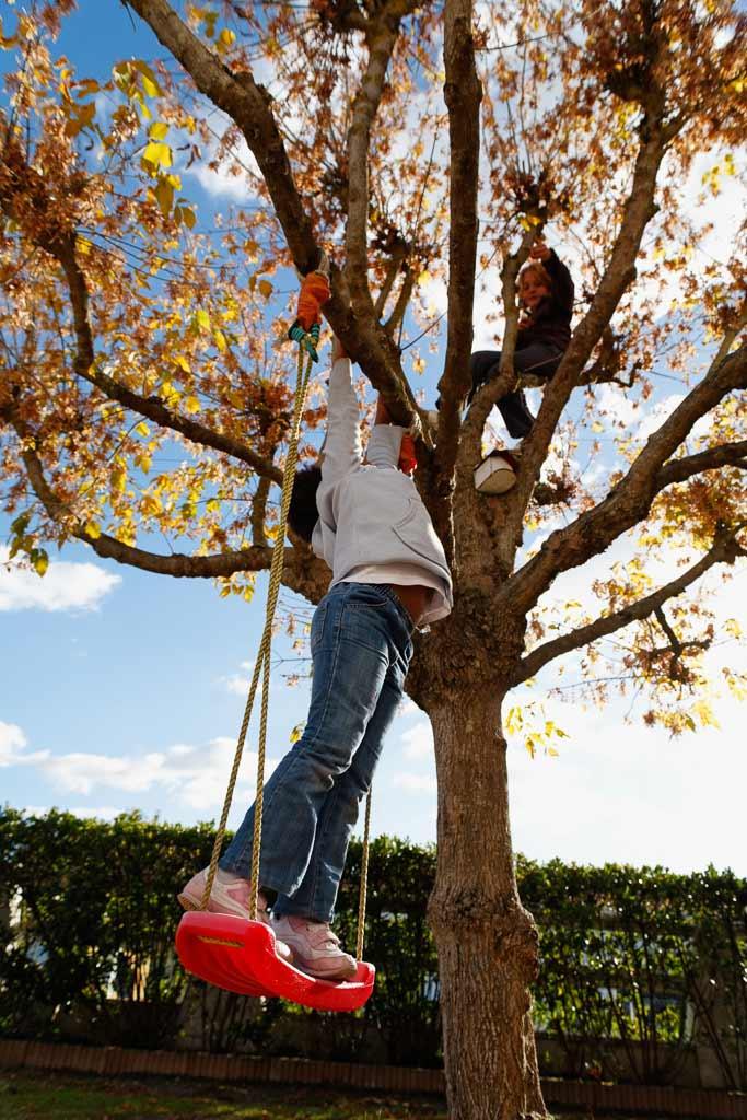 2 Enfants joue dans un arbres