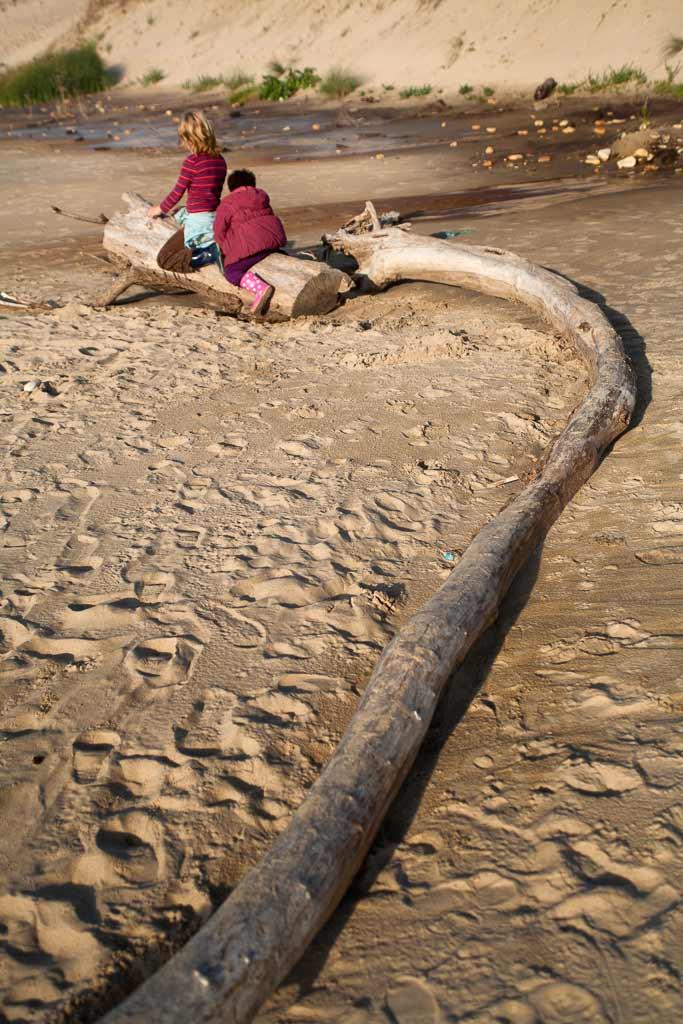 Sur le dos du serpent