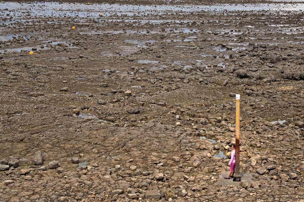 Petite fille en rose face aux rochers marée basse port des minimes La Rochelle