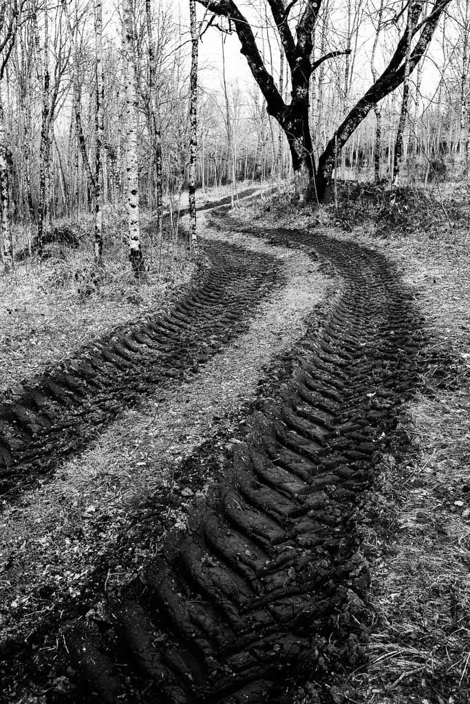 Trace profonde de tracteur dans la forêt
