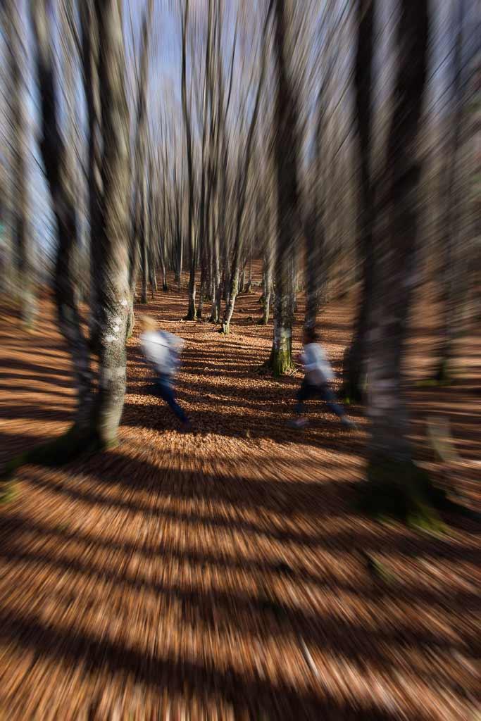 Course poursuite dans les bois