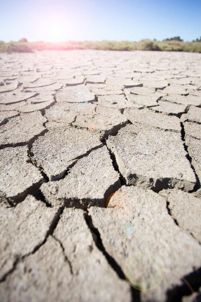 Terre craquelée sous le soleil