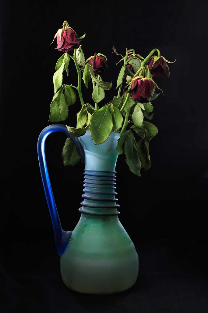 Roses fanées dans un vase