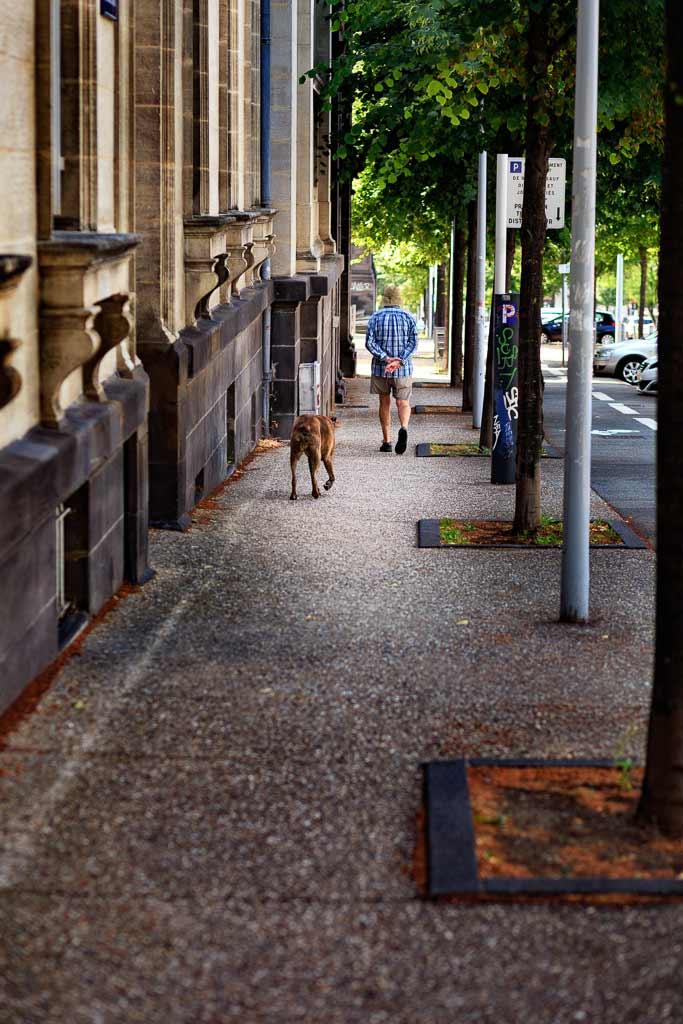 Un homme et son chien marche dans la rue Clermond ferrand
