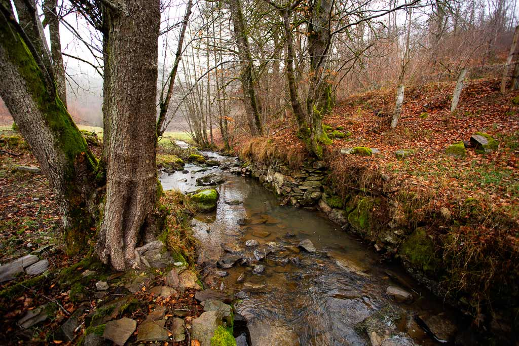 Rivière automne Cantal