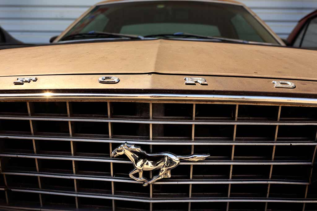 Calandre Ford Mustang