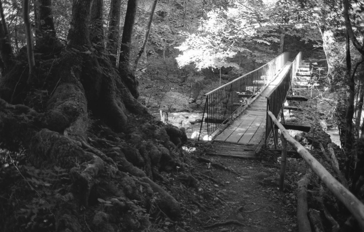 Pont de bois pas de Cère - Cantal
