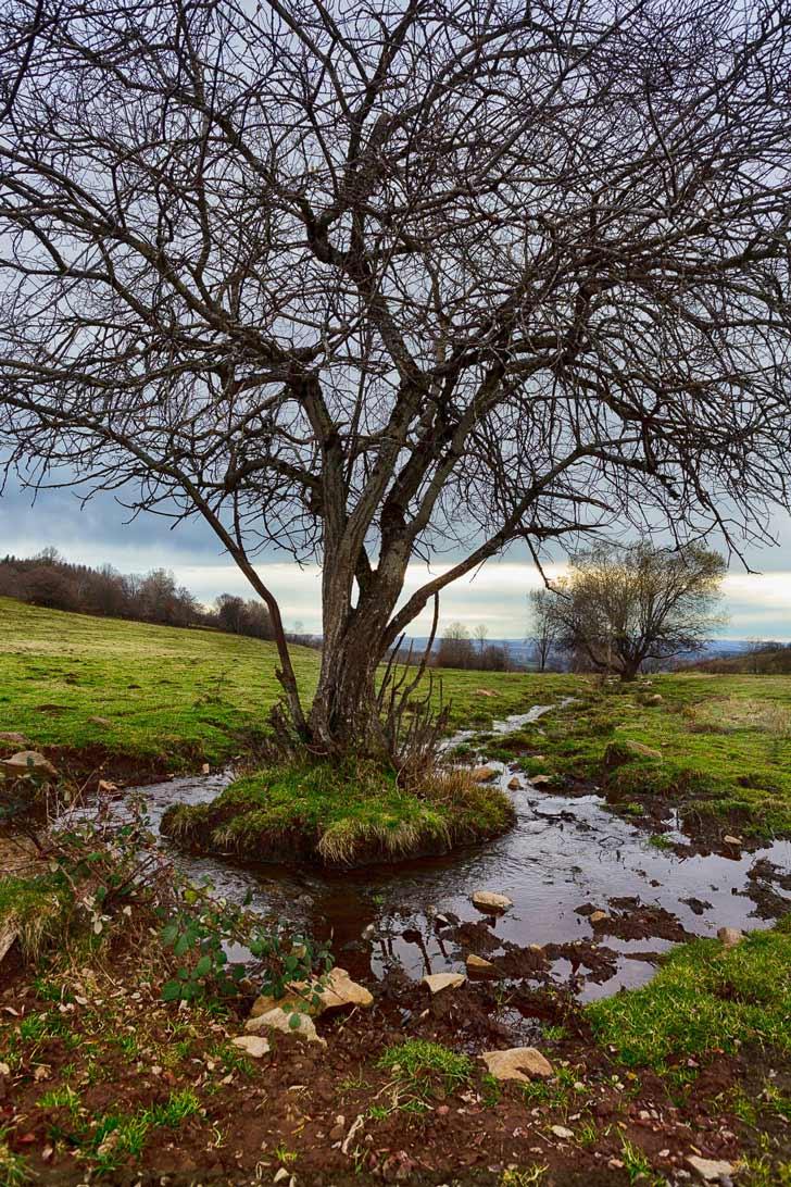 Paysage-d'automne-Cantal
